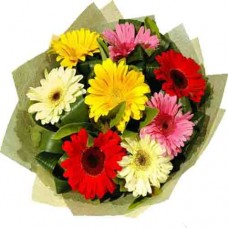 Mixed Gerbera Flowers