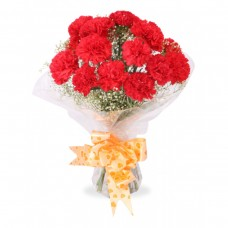 Red Carnation Bouquet